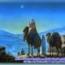 Thánh Kinh bằng hình: Chúa nhật Chúa Hiển Linh năm A