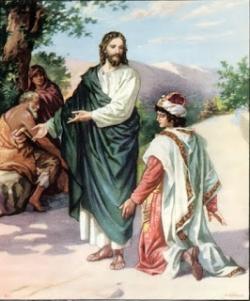 Vui Học Thánh Kinh CN 15 TN C
