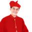 Mừng Kim khánh Linh mục của ĐHY GB  Phạm Minh Mẫn –  Bài giảng lễ của ĐGM Phêrô