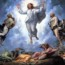 Thánh Kinh bằng hình: Chúa nhật XVIII Thường niên năm A