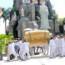 Hình Lễ tang Cụ Bà Lương Thị Đãi (6/10/2015)