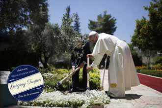 Giáo dân Thái trồng 800 cây hưởng ứng Thông điệp Chúc tụng Chúa của Đức Phanxicô